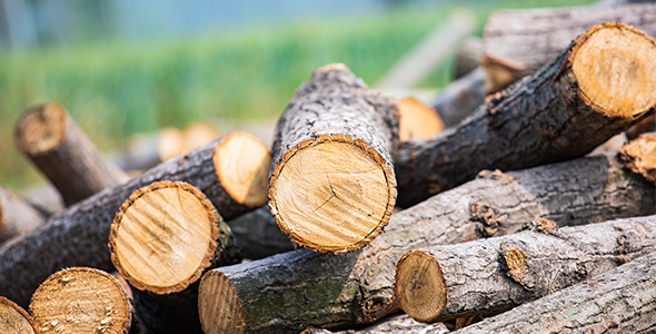 采用数十载成熟的各贵树种为基材